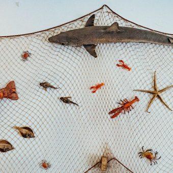 Deko in der Veddeler Fischgaststätte